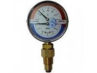 Изображение для услуги Манометр с термометром ДМТ 05080